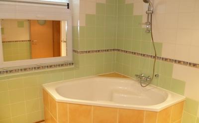 Salle de bain commune - La baignoire est remplacée par une douche pour plus de facilité d'usage pour les locataires.