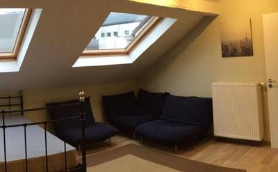 kot vert - spacieux - lumineux - salon - grand lit